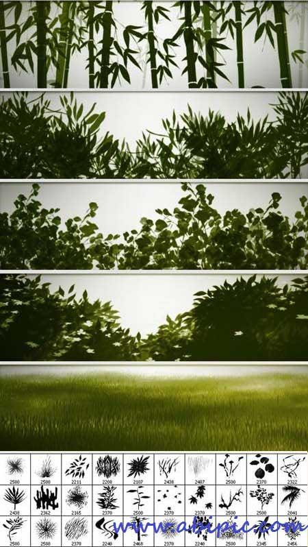 دانلود 30 براش با کیفیت از عناصر طبیعت Hi-Res Custom Brushes - Nature