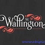 دانلود فونت انگلیسی ویلینگتن Wallington Font Family