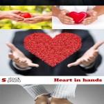 دانلود تصاویر استوک قلب در دست شماره 2 Stock Photos Heart in hands