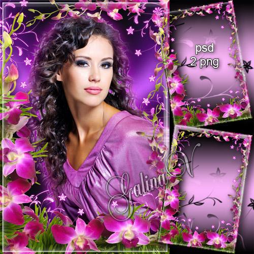 دانلود فریم و قاب عکس گلدار (گل ارکیده) Flowery Photoframe - Pink Orchids Weaving