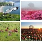 عکس های زیبا از طبیعت شماره 1