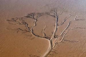 عکس هوایی از رودخانه