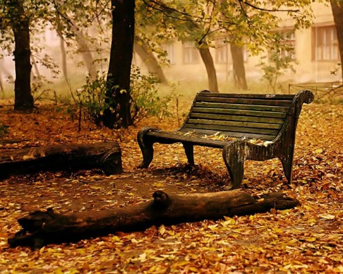 عکس های فصل پاییز