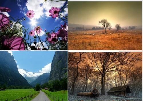 تصاویر زیبایی از طبیعت از نمای دور و نزدیک