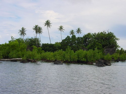 عکس نان مادول در کشور میکرونزی