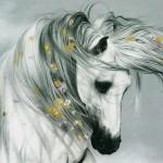 دانلود آثار هنری زیبا از دنیای حیوانات از هنرمند Lesley Harrison