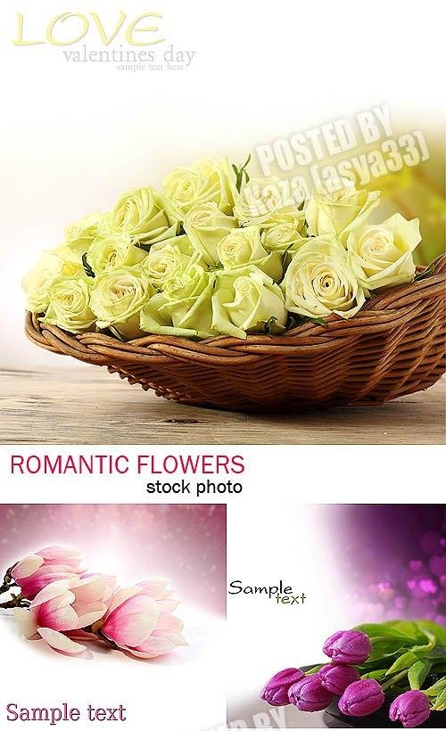 دانلود تصاویر استوک دسته گل های زیبا Flower bouquets Stock Photo