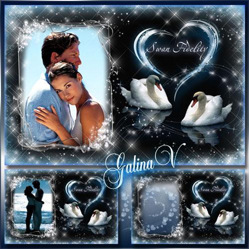 دانلود قاب عکس زیبای قو Love Frame   Swan Fidelity