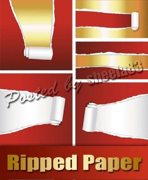 دانلود وکتور کاغذ پاره Ripped Paper Vector