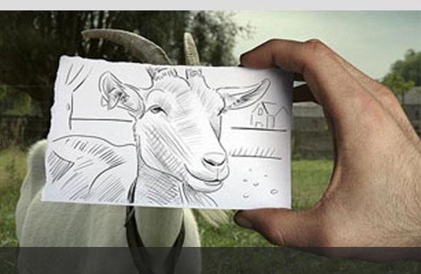 تصاویر هنرنمایی زیبا از تلفیق نقاشی و عکس