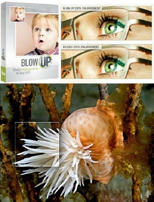 دانلود پلاگین فتوشاپ Alien Skin Blow Up 3.0.0.628