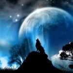 گرگ و ماه