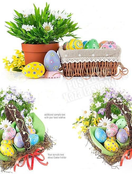 دانلود مجموعه ای از تصاویر استوک تخم مرغ های رنگی برای عید نوروز
