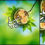 دانلود مجموعه تصاویر و پوستر های با موضوع سال نو و عید نوروز