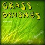 دانلود براش سبزه و چمن برای فتوشاپ Grass Brushes