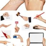 دانلود تصاویر وکتور دست در حالتهای مختلف وابزارهای مختلف در دست