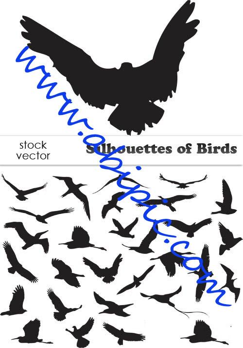 دانلود وکتور سیاه و سفید پرندگان Silhouettes of Birds