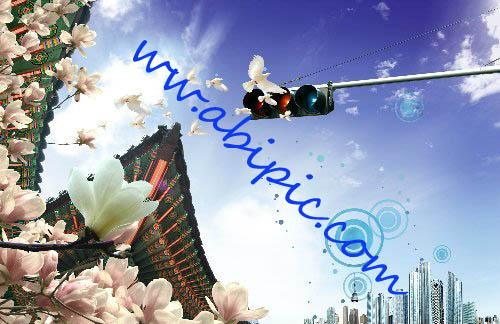 دانلود فایل سورس و لایه باز PSD ترکیبی از نمای شهر، کبوتر و گل