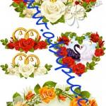 دانلود مجموعه از وکتور فریم و حلقه های گل عروسی