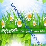 دانلود 4 وکتور طبیعت بهاری و تابستانی