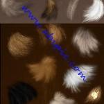 دانلود براش مو و پشم برای فتوشاپ Fur Brushes Set