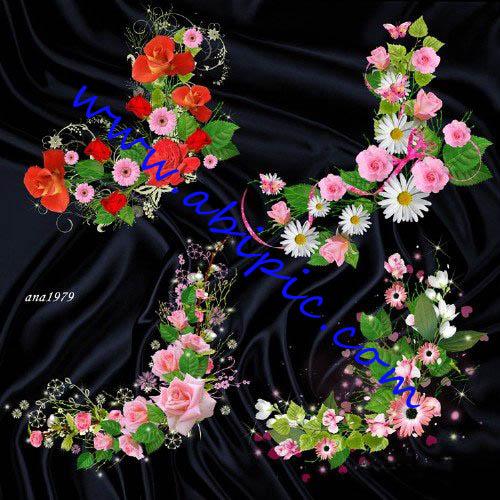 دانلود طرح لایه باز کادر و حاشیه با طراحی گل رز  Floral Corners   Roses