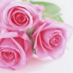 Flowers- (1)
