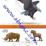دانلود تصاویر وکتور اریگامی از حیوانات Model origami animals vector
