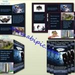 دانلود طرح لایه باز پوستر مشاور املاک PSD Template Real Estate Flyer