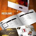 دانلود طرح ایندیزاین بروشور و رزومه 8 صفحه ای Portfolio Resume Brochure