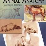 دانلود کتاب آموزش نقاشی: آناتومی حیوانات The Artist's Guide to Animal Anatomy