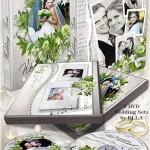 دانلود PSD کاور و طرح روی DVD برای عروسی با طرح نقره ای شماره 5