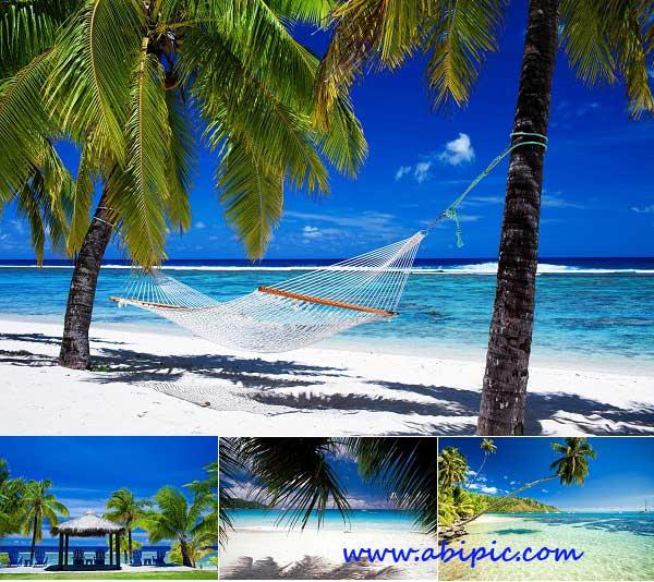 دانلود عکس های استوک از ساحل و جزایر گرمسیری و اقیانوسی Tropical Paradise