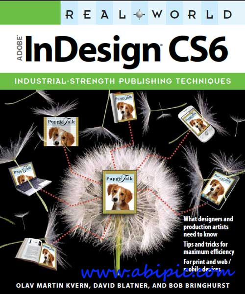 دانلود کتاب آموزش ایندیزاین Real World Adobe InDesign CS6