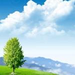 دانلود سورس لایه باز یک منظره سر سبز Green Fields Source