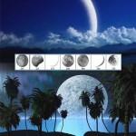 دانلود براش زیبای حالت های مختلف ماه Photoshop Brushes Moon