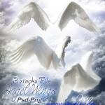 دانلود طرح لایه باز بال فرشته PSD Template – Wings Angel