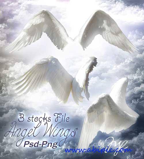 دانلود طرح لایه باز بال فرشته PSD Template - Wings Angel