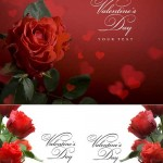 دانلود تصاویر شاتر استوک کارت تبریک گل رز Stock Photo greeting card red roses