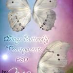 دانلود طرح لایه باز بال پروانه و فرشته شماره 2 PSD Template Wings Butterfly