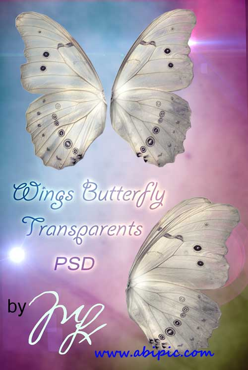 دانلود طرح لایه باز بال پروانه و فرشته PSD Template Wings Butterfly