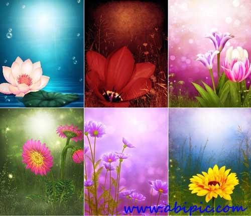 دانلود تصاویر استوک بک گراند های گل Floral backgrounds