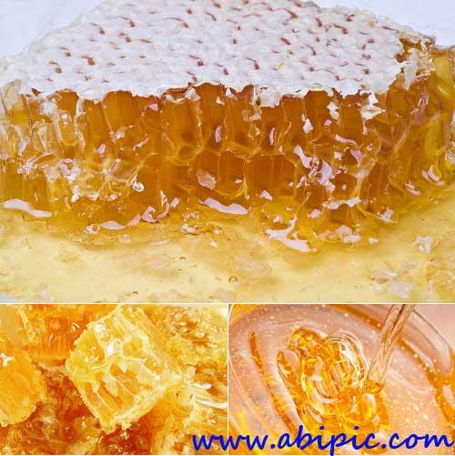 دانلود تصاویر استوک عسل Stock Photo - Honey & Honeycomb