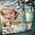 دانلود قاب عکس زمستانی شاخه و برف Winter photo frame