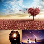 دانلود عکس شاتر استوک با مفهوم عاشقانه سری 1 Stock Photo – Love Concept