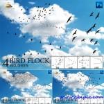 دانلود پک کامل براش دسته و گروه پرنده فتوشاپ Bird Flock Brushes