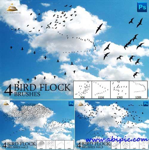 دانلود پک کامل براش پرنده فتوشاپ Bird Flock Brushes