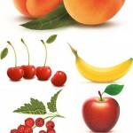 دانلود تصاویر وکتور استوک میوه های تازه shutter stock Juicy Fruit