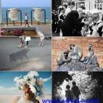 دانلود بهترین عکس های ماه فوریه Photography February 2013