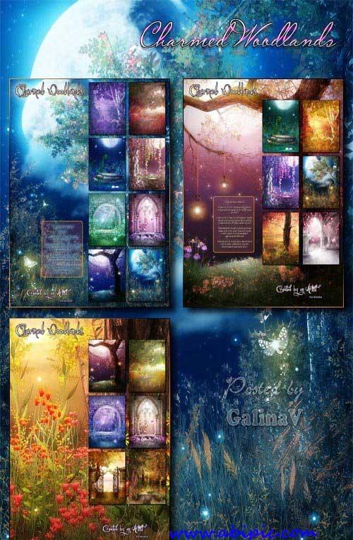 دانلود بک گراند های زیبا برای عکس های پرتره Charmed Woodlands Backgrounds
